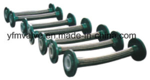 PTFE Flexible Hose Flange Type pictures & photos
