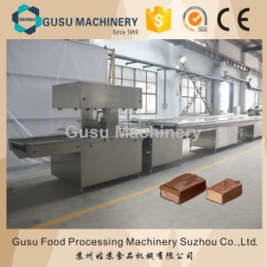ISO9001 Certified New Designed Chocolate Enrobing Machine (TYJ800) pictures & photos