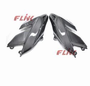 Motorcycle Carbon Fiber Parts Side Fairing (DHY05) for Ducati Hypemotard pictures & photos