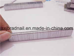 16ga Galvanized Wire Sofa N Staple for Sofa pictures & photos
