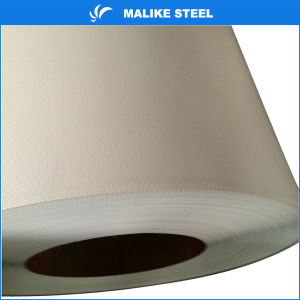 Ral Color Coated Steel Sheet in Coil