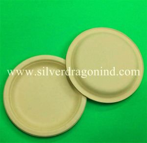 Biodegradable Wheat Straw Pulp Paper Plate Compostable Eco-Friendly  sc 1 st  Silver Dragon Industrial Limited & China Biodegradable Wheat Straw Pulp Paper Plate Compostable Eco ...