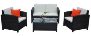 Modern Garden Rattan Furniture Patio Leisure Wicker Sofa Set (PAS-061)