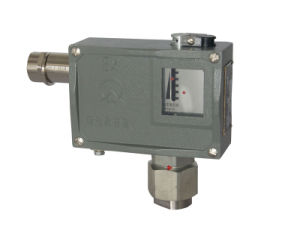 Adjustable Anti-Corrosive Explosion-Proof Micro Typical Pressure Switches
