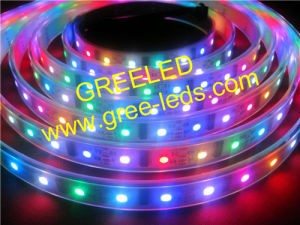 China 1m 60LEDs Lpd8806 Addressable Digital LED Strip