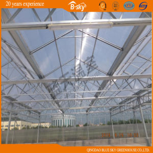 Hot Galvanized Steel Glass Covered Greenhouse pictures & photos