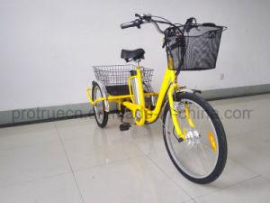 Lithium Battery Electric Cargo Bicycle for Farmer pictures & photos