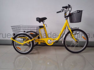 3 Wheel Electric Bicycle with Cargo pictures & photos