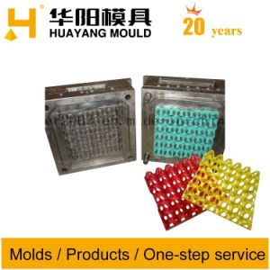 Plastic Injection Mold/Mould for Egg Tray (HY002) pictures & photos