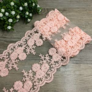 Embroidered Border Mesh Lace Trim pictures & photos