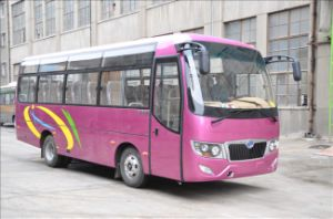 31 Seater Tourist Bus Ls6729