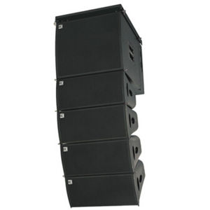Hot Sale +China Wholesale DJ Equipment + Line Array System (W-82B&W-15BP) pictures & photos