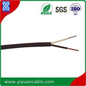 T Type Teflon Cable for Thermocouples (T Type Teflon/Teflon 0.81mm)