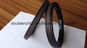 Bronze Filled PTFE Seal (SPGW)