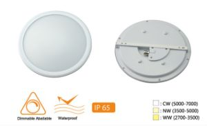 IP54 LED Ceiling Light with Ce RoHS pictures & photos