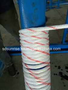 PP 8 Strands Rope White with Red pictures & photos