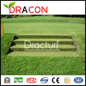 Backyard Artificial Lawn Grass Carpet (L-3005) pictures & photos