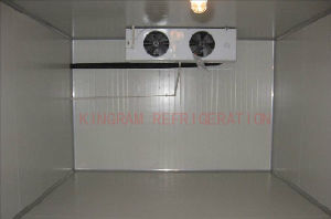 Fresh Vegetable Cold Room 3 Ton