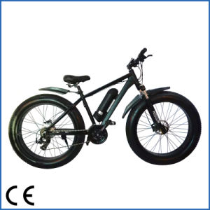 New Product Cheap Electric Mountain Bike Electric Fat Bike (OKM-679)