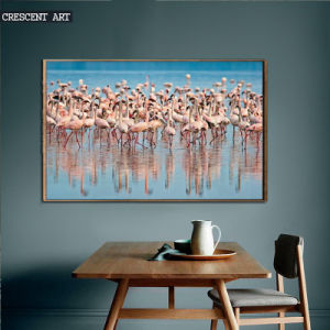 A Herd of Red-Crowned Cranes Canvas Print pictures & photos