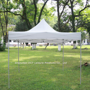Strengthened Gazebo / Special Strong Style (FG010) pictures & photos