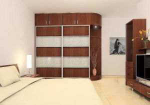 Bedroom Furniture Double Door Cloth Wardrobe Closet