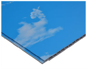 New Design 3D Painting and Ceiling Panel Blue Sky PVC Ceiling Panel (161)