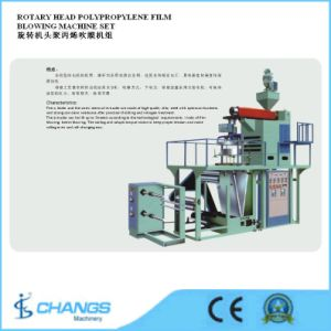 Sjpp-75/800 Rotary Head Polypropylene Film Blowing Machine Set pictures & photos