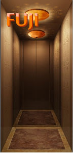 Villa Elevator / Lift (HOME ELEVATOR) pictures & photos
