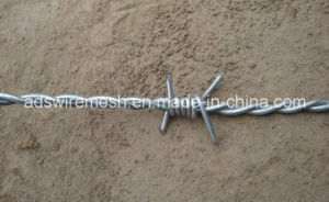 Best Price Galvanized Barbed Wire pictures & photos