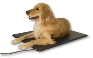 Electric Plastic Pet Heating Pad with CE and RoHS Approval pictures & photos