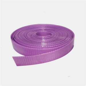 Tie Down 25mm Polyester/Nylon/Textile Strap Material for Furniture pictures & photos