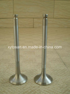 Auto Engine Intake Valve & Exhaust Valve for Chevrolet GM Buick Sail 2.4 Gl8 3.0 (OEM 24505722/10166342) pictures & photos