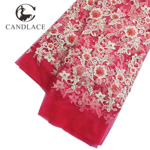 Fushia Pink Color African French Lace Fabric for Aso Ebi Party pictures & photos