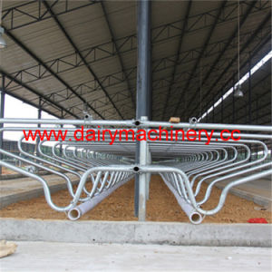 Cow Farm Steel Pipe Cow Free Stall pictures & photos
