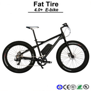 250W/500W Fat Tyre Electric Bike/E Fat Bicycle/ Fat Pedelec/Electric Snow Bike/E Bike/Electric Bicycle (TDE12Z) pictures & photos