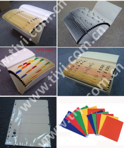 Paper Stationery / Paper Files / Expanding Files