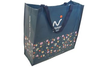 Cheap Non Woven Fabric Bag Factory Price Promotional PP Nonwoven Bag
