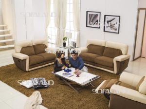 Two Color Match Together Home Sofa