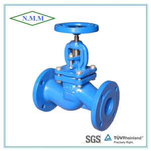 Cast Iron Globe Valve DIN Standard pictures & photos