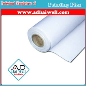 PP Paper Roll Indoor Advertising Printing pictures & photos