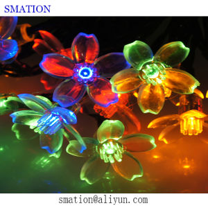 Warm White LED Christmas Decorations Outside Wholesale Exterior String Lights pictures & photos
