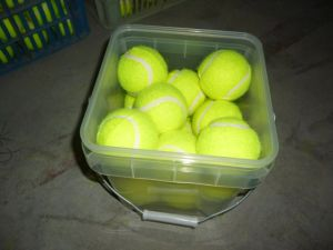 Plastic Bucket 12PCS Tennis Ball