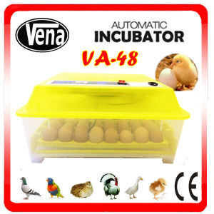Christmas Gift! CE Approved Automatic Chicken Egg Incubator Va-48 pictures & photos