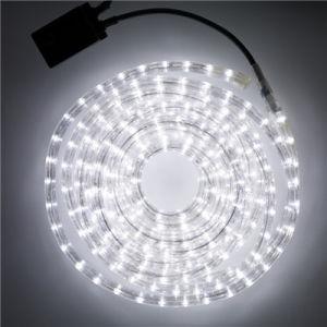 24v Rope Light Ip65 Led White High Brightness 13mm