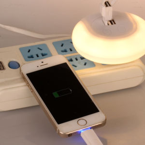 Charger with LED Sensor Night Light pictures & photos