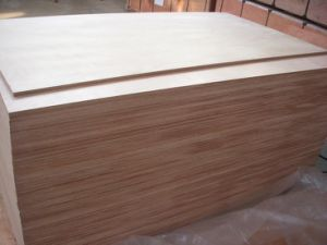 Plywood (marine grade) pictures & photos