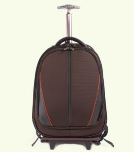 Trolley Travel Bag Laptop Bag Backpack (ST7121) pictures & photos