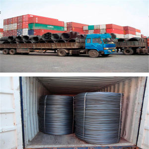 China Hot Rolled Ms Prime Alloy Steel Sea1006 Sea1008 Wire Rod pictures & photos