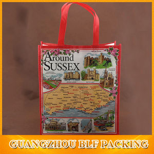 Colorful Laminated PP Non Woven Bag pictures & photos